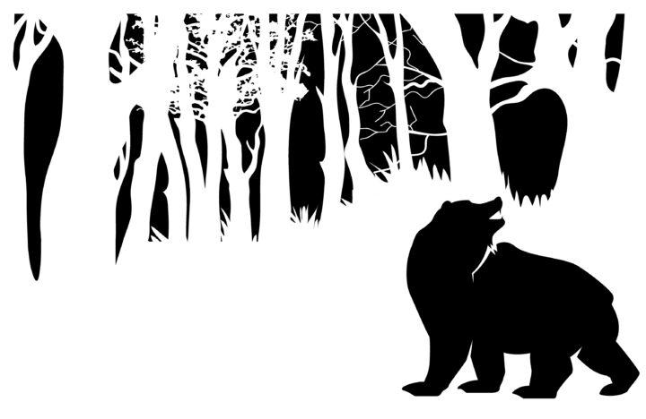Why Brave Bear?